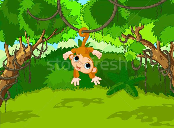 Baby aap boom illustratie tropische bos Stockfoto © Dazdraperma
