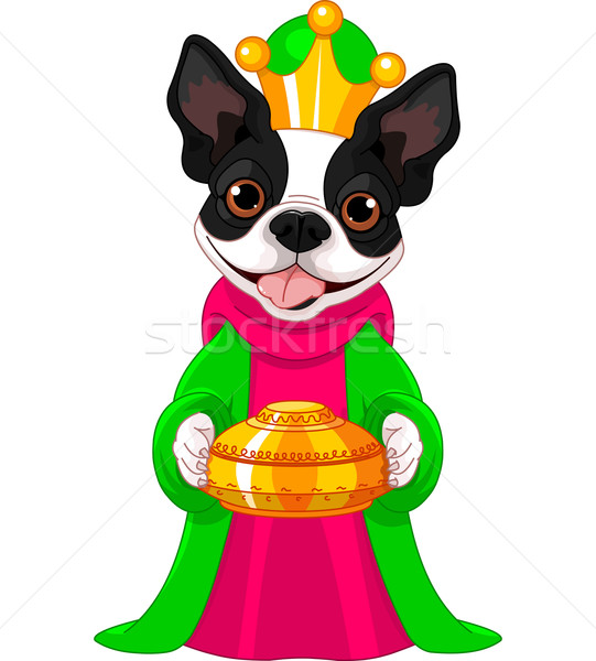 The Boston terrier as a Biblical Magi Stock photo © Dazdraperma