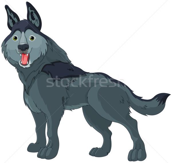 Sluw wolf illustratie cute cartoon hond Stockfoto © Dazdraperma