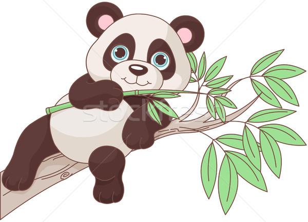 Bebê panda ilustração bonitinho sessão ramo Foto stock © Dazdraperma