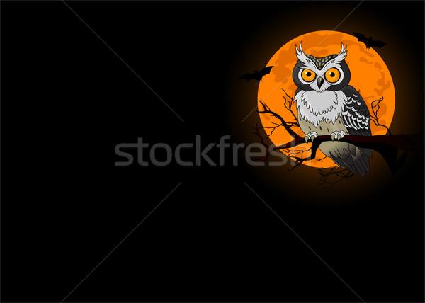 Chouette nuit séance lune Photo stock © Dazdraperma