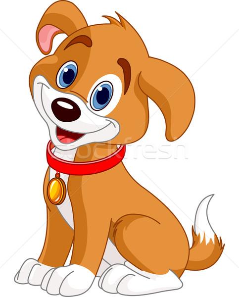 Cute Dog Stock photo © Dazdraperma