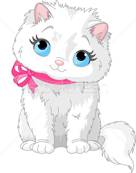 Cute white cat Stock photo © Dazdraperma