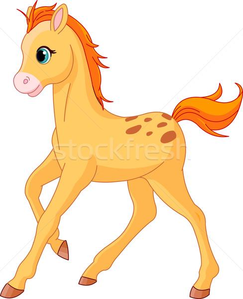 Cute Horse foal running Stock photo © Dazdraperma