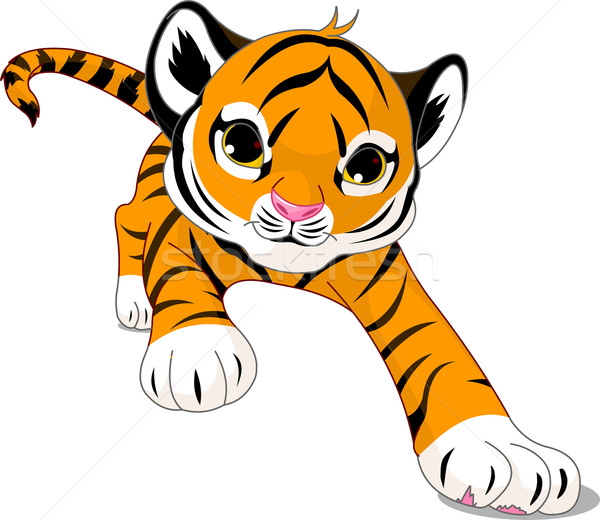Running  baby tiger Stock photo © Dazdraperma