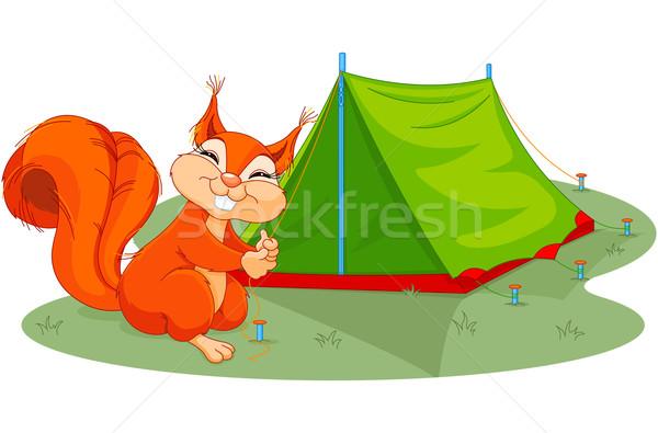 Sincap çadır örnek komik alan yeşil Stok fotoğraf © Dazdraperma