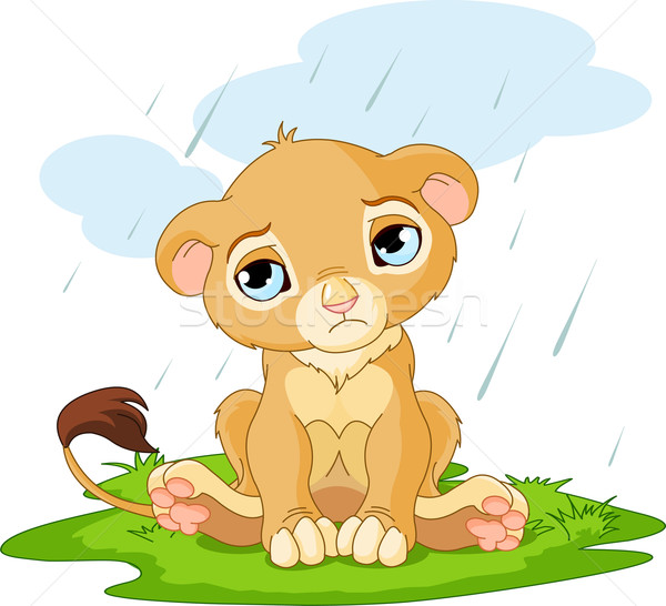 悲しい ライオン カブ かわいい 文字 雨の ストックフォト © Dazdraperma