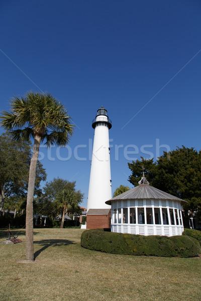 Faro palma verticale bianco blu albero Foto d'archivio © dbvirago
