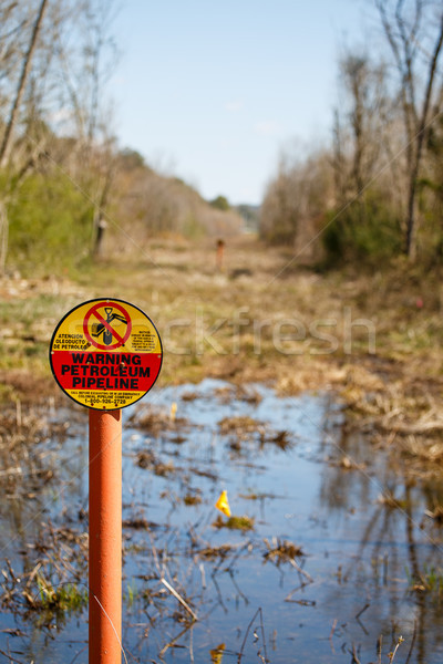 Petroleum Pipeline Easement in Wetlands Stock photo © dbvirago