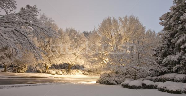 Strada notte neve luce Foto d'archivio © dbvirago