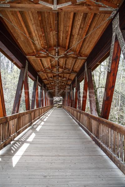 Foto d'archivio: Coperto · ponte · vecchio · legno · primavera