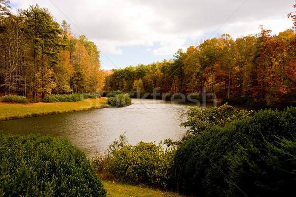 Foto d'archivio: Autunno · lago · alberi · caduta · anno · cielo