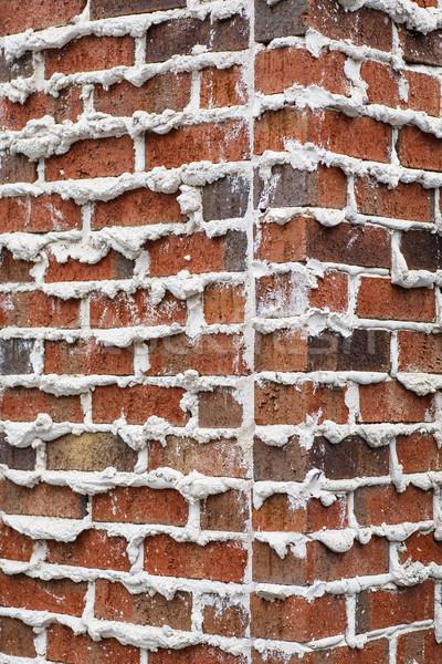 コーナー レンガの壁 ラフ 関節 良い テクスチャ ストックフォト © dbvirago