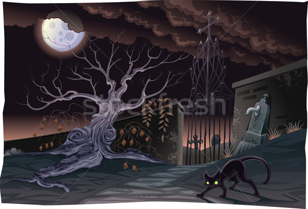 Black cat and cemetery in the night. Stock photo © ddraw