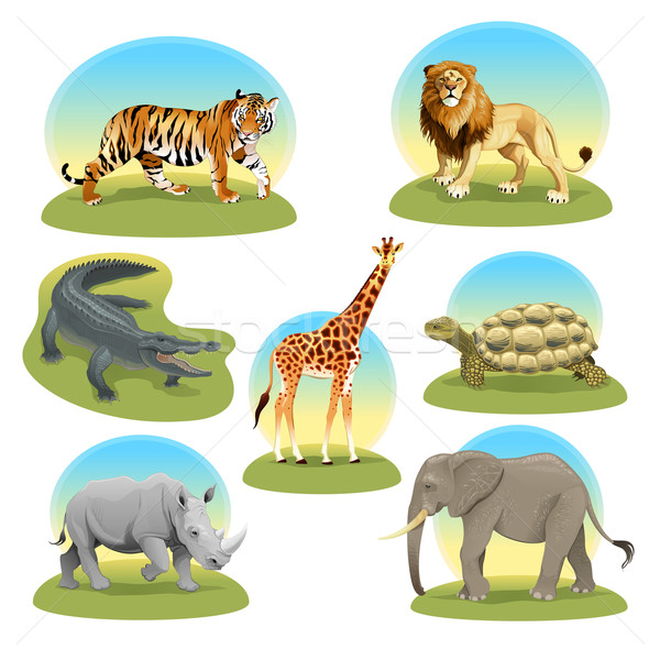 African animals iwith graphic backgrounds.  Stock photo © ddraw