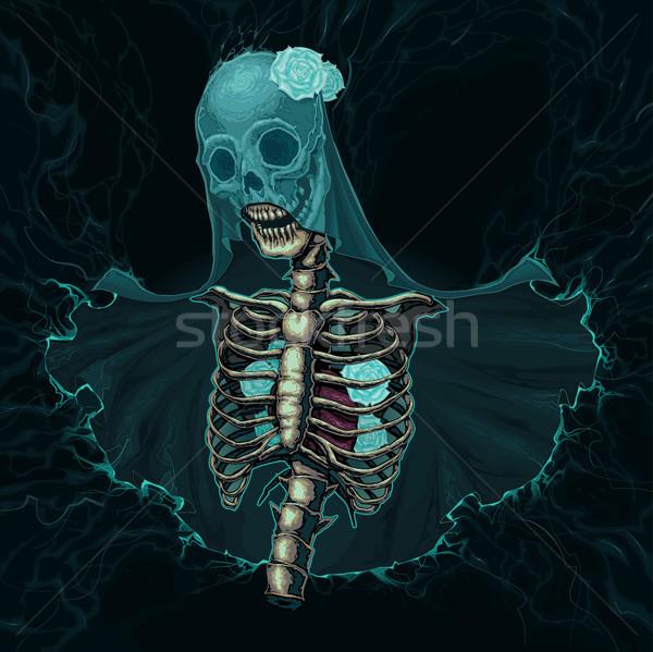 Csontváz fátyol fehér rózsák vektor horror Stock fotó © ddraw