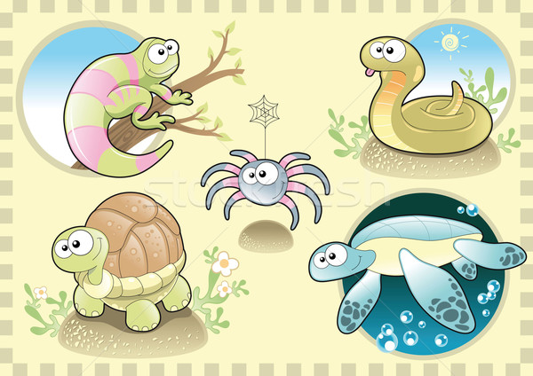 Reptiles and Spider Family with background. Stock photo © ddraw