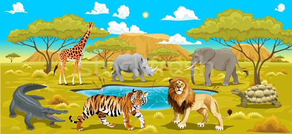 африканских пейзаж животные вектора природного иллюстрация Сток-фото © ddraw