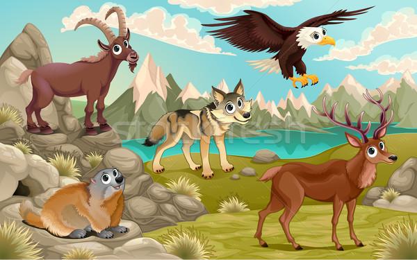 Grappig dieren berg landschap vector cartoon Stockfoto © ddraw