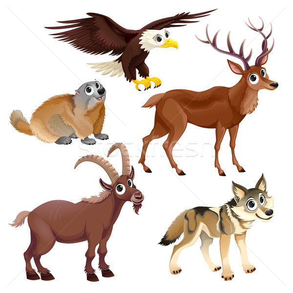 Funny mountain animals, deer, eagle, groundhog, steinbock, wolf Stock photo © ddraw