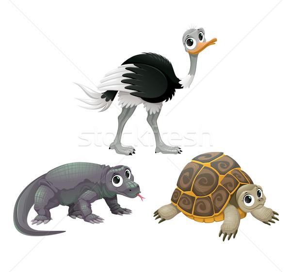 Funny Australian animals, ostrich, turtle and Komodo dragon Stock photo © ddraw