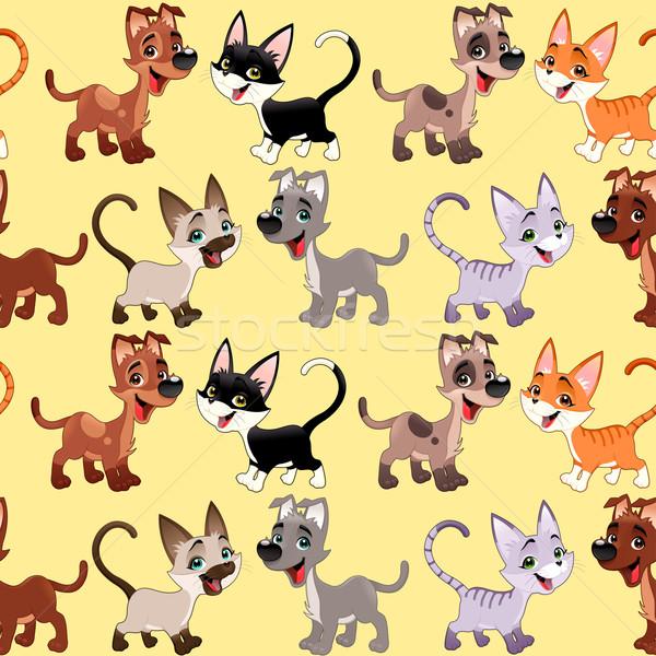 Funny Katzen Hunde wiederholen möglich Verpackung Stock foto © ddraw