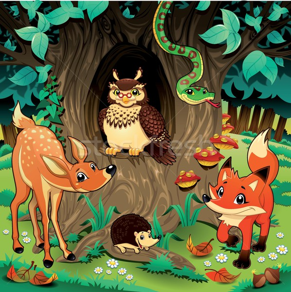 Animals in the wood. Stock photo © ddraw