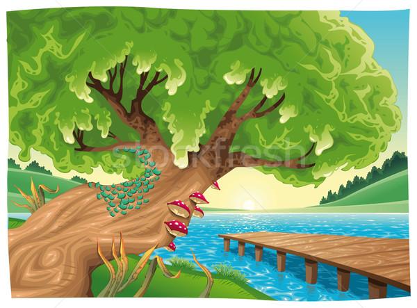 Paisagem água objetos isolados primavera grama madeira Foto stock © ddraw