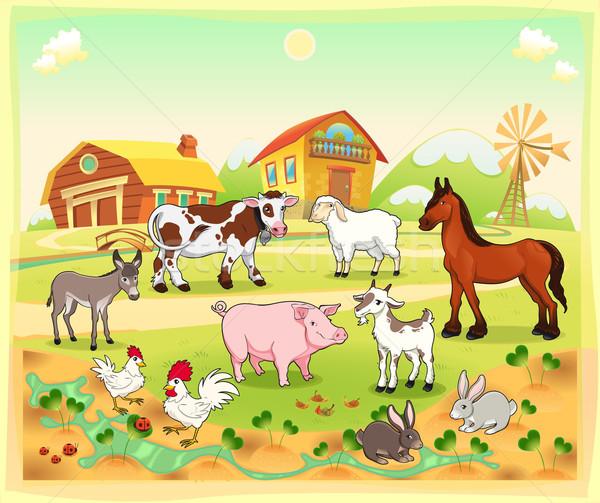 Farm animals with background.  Stock photo © ddraw