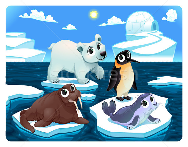 Polar animales hielo vector Cartoon ilustración Foto stock © ddraw