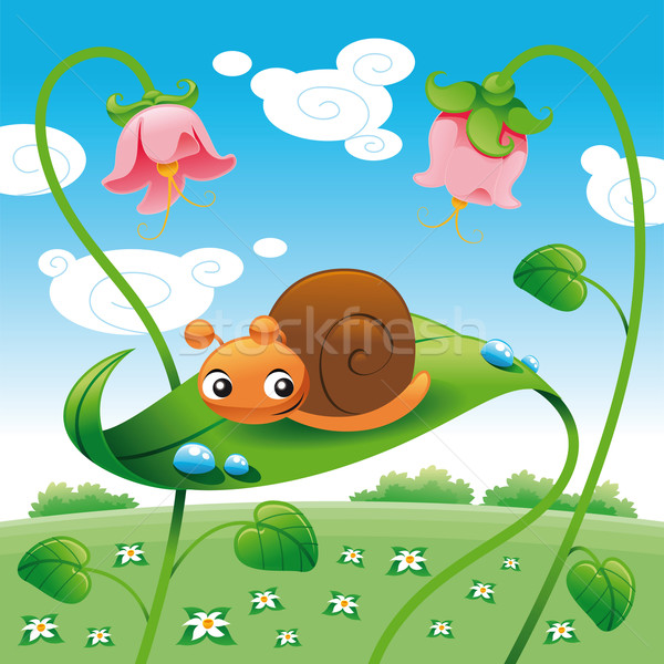 Snail on the leaf.  Stock photo © ddraw