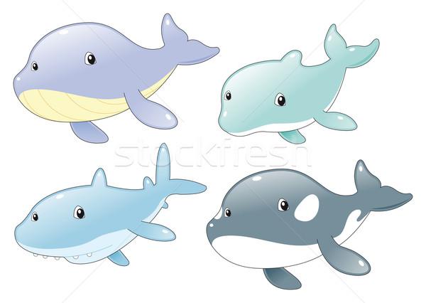 Yunus köpekbalığı balina katil okyanus balık Stok fotoğraf © ddraw