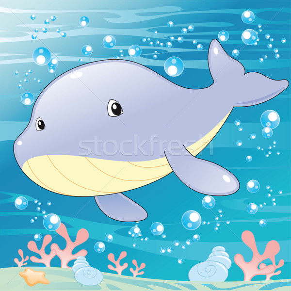 Baby Whale. Stock photo © ddraw