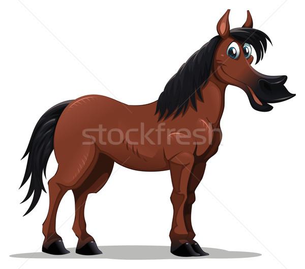 Funny horse. Stock photo © ddraw