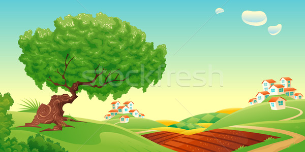 Countryside.  Stock photo © ddraw