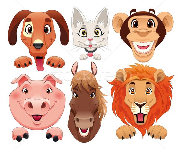 животные портрет смешные Cartoon вектора изолированный Сток-фото © ddraw