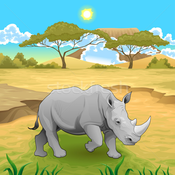 Africano paisagem rinoceronte deserto cor desenho animado Foto stock © ddraw