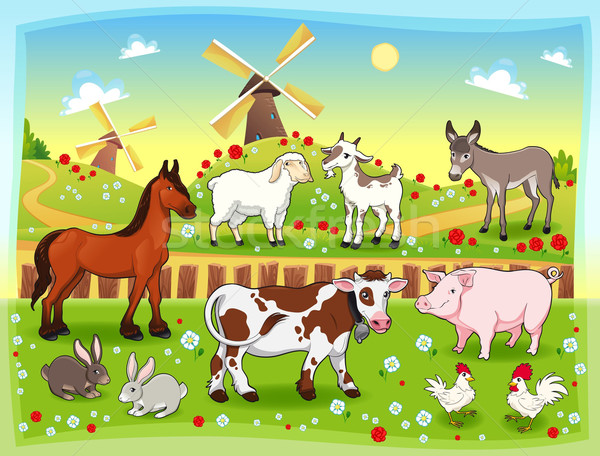 Farm animals with background. Stock photo © ddraw