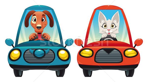 Dieren auto hond kat grappig cartoon Stockfoto © ddraw