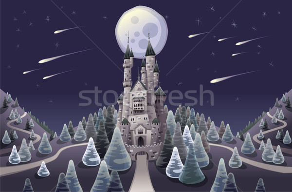 Panorama with medieval castle in the night. Stock photo © ddraw