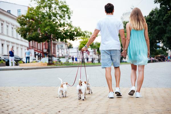 Barátságos pár sétál kutyák együtt figyelmeztetés Stock fotó © deandrobot