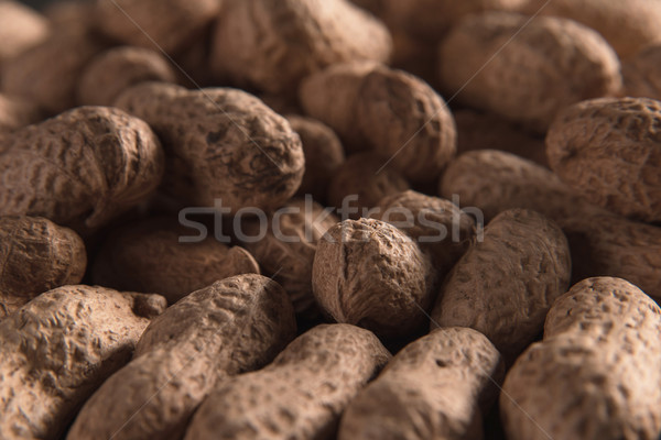 Dried peanuts put by a row Stock photo © deandrobot
