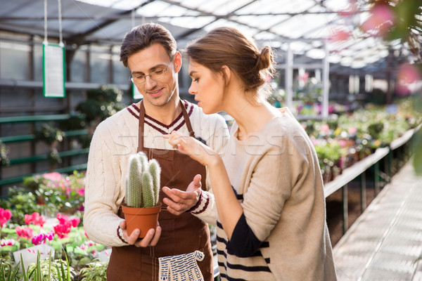 Salesman  offers cactus to young woman in orangery Stock photo © deandrobot