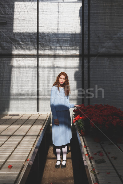 Shot of woman in orangery Stock photo © deandrobot