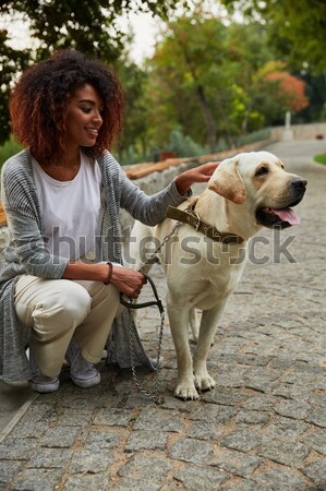 Pretty owner walking with her dog in the morning in park Stock photo © deandrobot