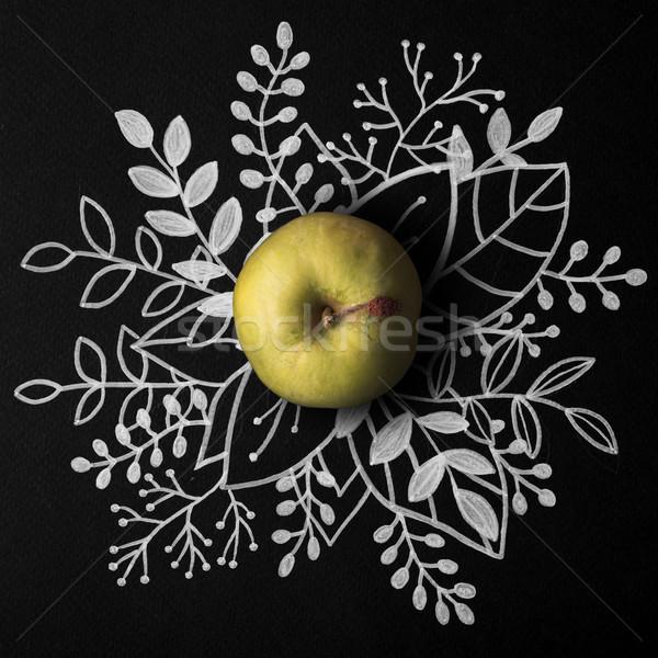 Groene appel schets ontwerp Stockfoto © deandrobot