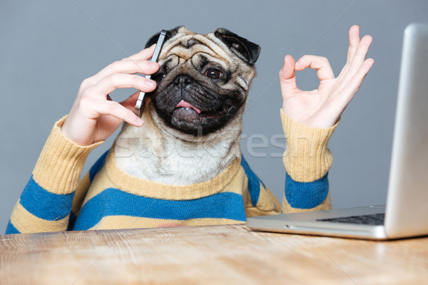 Happy man with pug dog head talking on cell phone  Stock photo © deandrobot