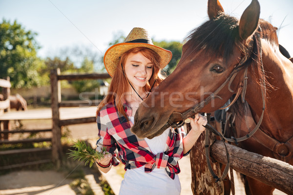 Cheerful woman cowgirl giving food to horse on ranch Stock photo © deandrobot