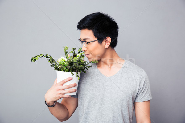 Man smelling flowers in a pot Stock photo © deandrobot
