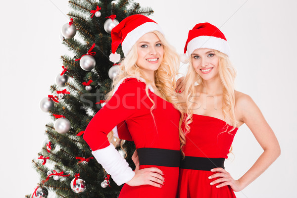 Sisters twins in santa claus costumes standing near Christmas tree Stock photo © deandrobot